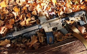 Picture autumn, leaves, weapons, gun, carabiner, airsoft, 2016, carabin, airsoft
