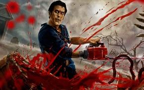 Picture blood, ash, death, guts, chainsaw, evil dead