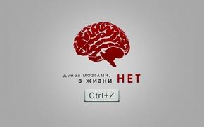Picture think, Ctrl z, brains, error, minimalism