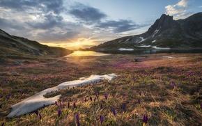 Picture lake, sunrise, rocks, spring, crocuses, Bulgaria, Rila