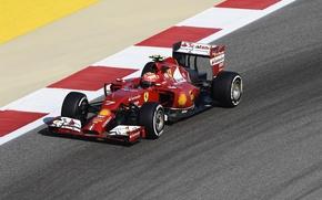 Picture ferrari, formula 1, kimi raikkonen also, raikkonen also, kimi, f14t, gp bahrain