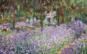 Picture landscape, picture, Claude Monet, Irises in Monet's Garden