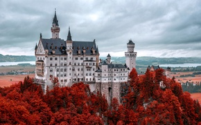 Wallpaper castle, Germany, autumn, mountain, Neuschwanstein, Bavaria, Alps, Neuschwanstein Castle