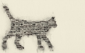 Picture cat, typography, newspaper