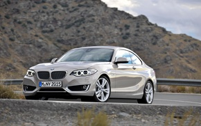 Picture BMW, Coupe, 2013, 2 Series