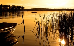 Picture forest, sunset, lake, boat, Sepia