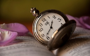 Picture text, time, watch, rose, petals, book, pink