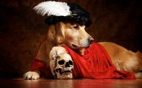 Picture pen, skull, cloak, takes, Retriever, Hamlet