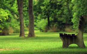 Wallpaper summer, grass, bench, Park, tree, shop