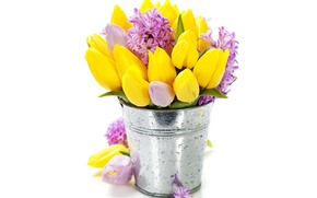 Picture flowers, bouquet, tulips, flowers, tulips, bucket, bouquet, hyacinths, hyacinths, bucket