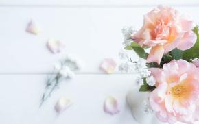 Wallpaper tenderness, roses, petals
