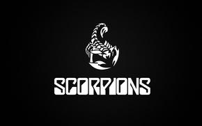 Picture minimalism, scorpions, logo, rock, group