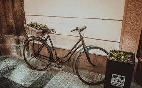 Picture retro, pavers, Prague, Europe, Bike, vintage, Installation