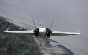 Picture fighter, cabin, multipurpose, Hornet, CF-18