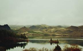 Picture trees, mountains, fog, lake, island