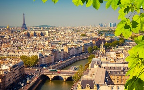 Picture leaves, branches, river, France, Paris, home, Eiffel tower, bridges, the view from the top