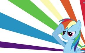 Picture rainbow dash, My little pony, brony