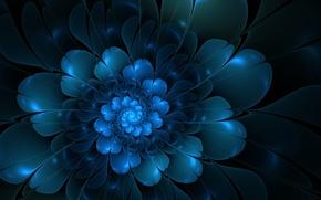 Picture flower, abstraction, petals, vectors