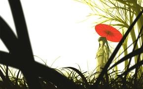 Picture umbrella, Japanese, Girl, bamboo, beauty, kimono