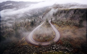 Picture road, forest, trees, mountains, nature, fog, Oregon