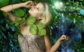 Picture leaves, girl, light, blonde