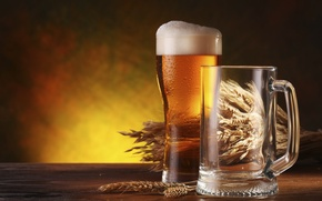 Picture glass, beer, barley, a beverage alcoholic