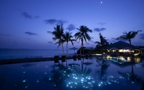 Picture sea, night, pool, Palm trees