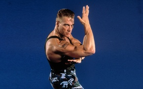 Picture background, man, actor, athlete, Jean-Claude Van Damme, Jean-Claude Van Damme