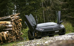 Picture Lamborghini, Black, LP700-4, Aventador, Supercar, Forest, Trees