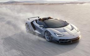 Picture Roadster, speed, Lamborghini, supercar, car, beautiful, beautiful, wallpapers, the front, Centennial