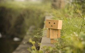 Picture greens, grass, macro, plants, border, walk, danbo