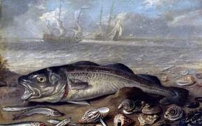 Wallpaper still life in landscape, picture, ship, Jan van Kessel the Elder, Fish and Shells on ...