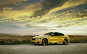 Picture automotive photography, Coupe, front, yellow, F82, BMW