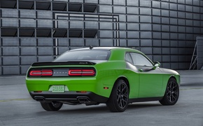 Picture green, Dodge, Challenger, car, Dodge, rear view, T/A