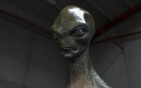 Picture alien, aliens, fantastic, portrait, other