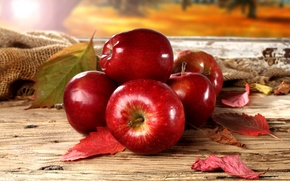 Picture autumn, leaves, red apples