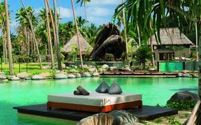 Picture palm trees, pool, Bungalow, beautiful, Fiji, aqua pool