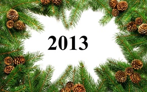 Picture branches, Happy New Year, bumps, year, new, 2013