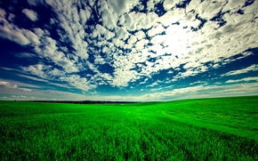 Picture The sky, Nature, Clouds, Field, Landscape