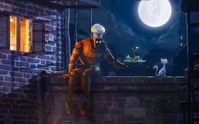 Picture light, night, the moon, Robot, Koshak, cook