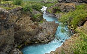 Picture grass, river, stones, rocks, for, shrub