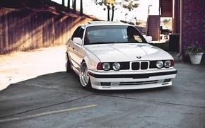 Picture White, BMW, BMW, StanceWorks