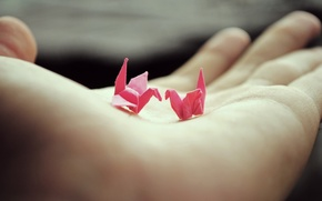 Picture hand, palm, origami, cranes