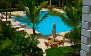 Picture palm trees, pool, chairs, pool, sunbeds, tables., exterior