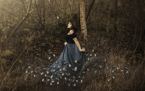 Picture forest, girl, butterfly, the situation