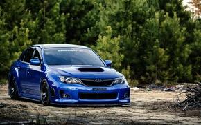 Picture Subaru, Impreza, WRX, blue, Subaru, Impreza, STi, frontside