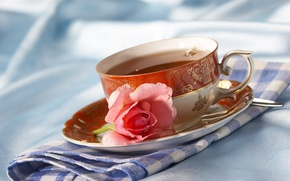 Picture flower, tea, rose, the tea party, Cup, napkin