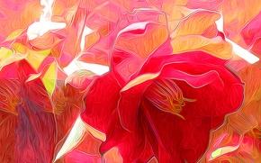 Picture rendering, petals, flower, nature