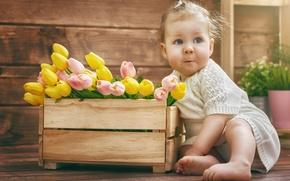 Picture flowers, child, tulips, baby, child, kid, little girl, Tulips, Little girl, Infants
