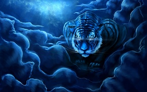 Picture the sky, night, tiger, art, zepher234